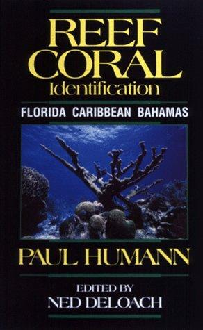 Download Reef Coral Identification