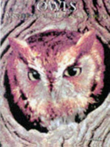 Download Owls