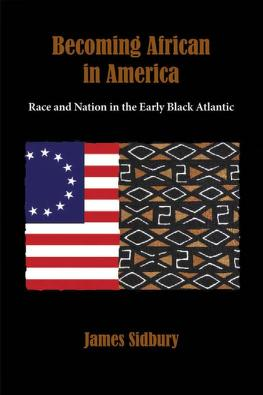 Becoming African in America by James Sidbury